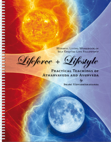 Lifeforce Workbook Cover