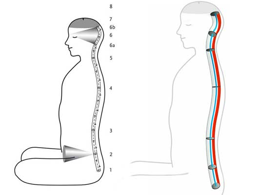 Kriya Yoga Spinal Breathing